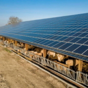 Solar energy farm in Chattanooga for agriculture